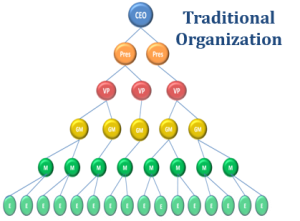 Trad Org Diagram